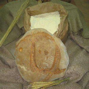 Pane di Trecchina pane della Basilicata